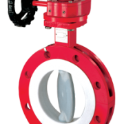 Richter PFA Lined Butterfly valve