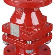 Richter PFA Lined Ball Check Valve