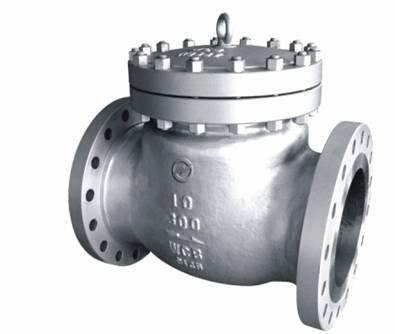 Check Valves Petrochemical